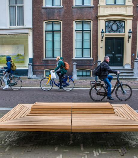 Nieuwe banken sieren Den Haag: 'Gelukkig is de boom gespaard, dat is belangrijk hier'