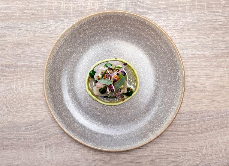 Kingfish met guacamole / quinoa salade / gepofte quinoa / zilte kruiden / koriander crème en vinaigrette van tigermilk Beeld Els Zweerink