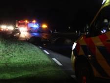 Twee paarden overleden bij ongeval in Weerselo