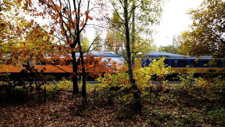 Volgend jaar moet de helft van de treinen al op groene stroom rijden. Beeld null