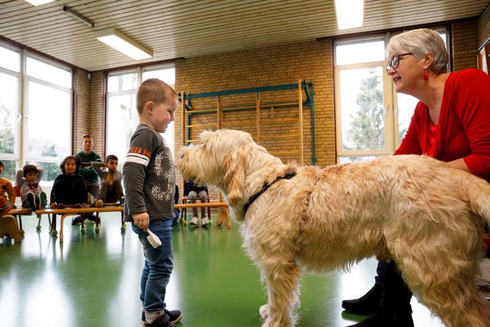 De kleine Finn mag Pelle borstelen, maar moet de hond eerst laten snuffelen