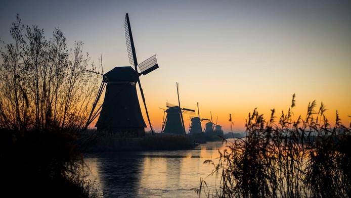 De molens in Kinderdijk bij het ochtendgloren.