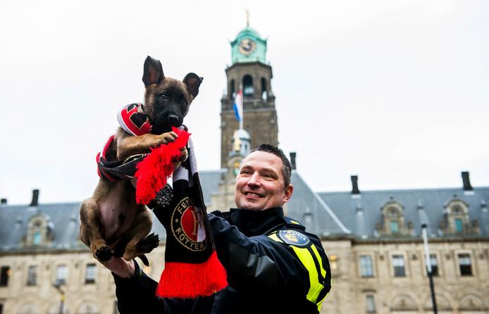 Politiehond Bumper met een Feyenoord-sjaal.