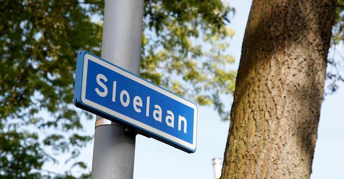 Op de Sloelaan in Terneuzen ontstond dinsdag een grote samenscholing van leerlingen. De politie voorkwam dat die uitmondde in een vechtpartij.