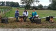 De Coöperatie plaatst zitbank langs wandelweg tussen Impe en Papegem