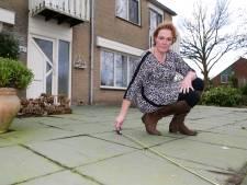 Majella en Marco moeten 2000 euro betalen voor 8 vierkante meter tuin: grond blijkt toch van gemeente