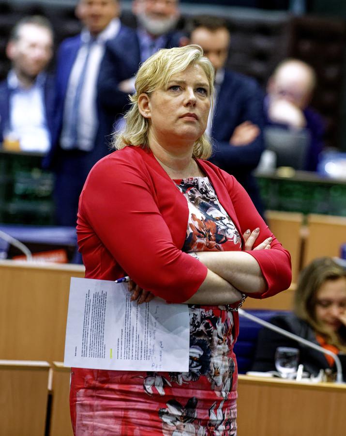 CDA-fractievoorzitter Ankie de Hoon.