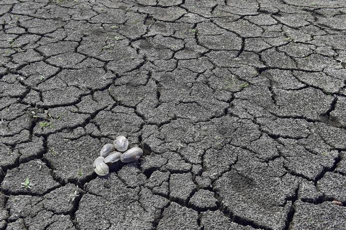 In midden Frankrijk, in het departement Creuse, kampen ze met een van de droogste periodes ooit.