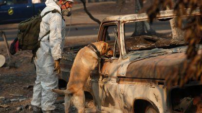 Na bosbranden zet Californië zich schrap voor volgende natuurdreiging: regen
