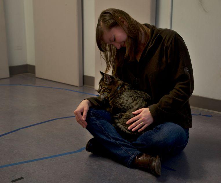 Een kat zoekt bescherming bij zijn baasje. Beeld Kristyn Vale