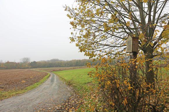 De werf doet ook deze veldwegel, een zijweg van de Molenstraat, aan.