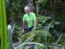 BN DeStem TuinAward deel 3: Tuin van Henny en Mieke Smits in Dongen 'Snoeien is soms best spannend'