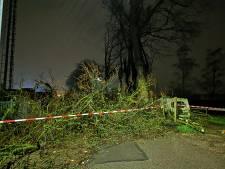 Storm Dennis: extra centralisten opgeroepen, opruimen bomen Spijk te gevaarlijk en veel meldingen