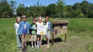 Kinderen maken vijf 'hotels' voor bijen