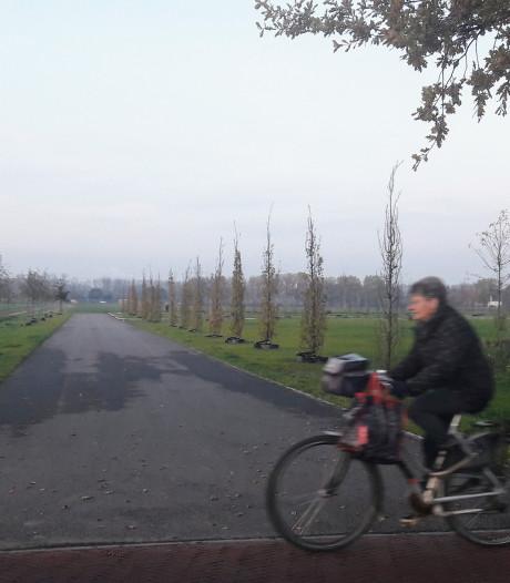 Omdat het moet: begraafplaats Zevenbergen nóg 31.000 euro duurder