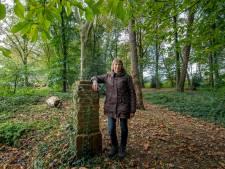 Wie helpt actievoerders om bomenkap in het Patersbosje tegen te houden?