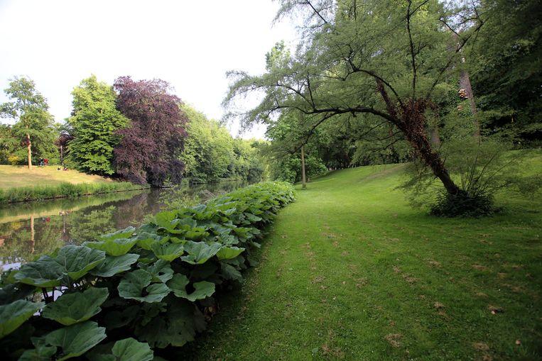 De Vesten, de mooiste tuin van de Bruggeling, krijgen een revitalisatie door het waardevolle bomenbestand aan te vullen