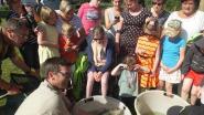 Leerlingen ontdekken wat er in Vosselare Put zwemt