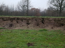 De kenmerkende aarden wal is totaal ondergraven door konijnen.