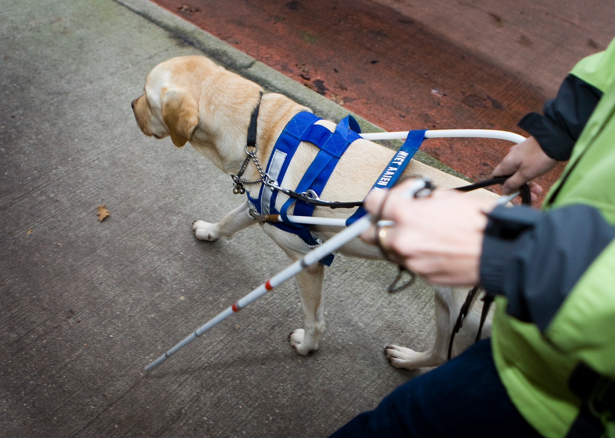 Blinden en slechtzienden kunnen via een speciale app achterhalen of hun trein vertraging heeft of bijvoorbeeld van een ander perron vertrekt.