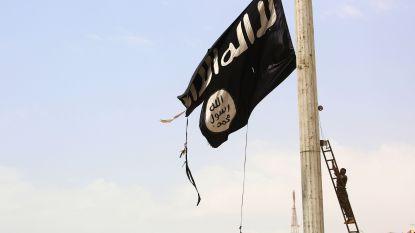 IS-complot Kosovo werk van Belgen