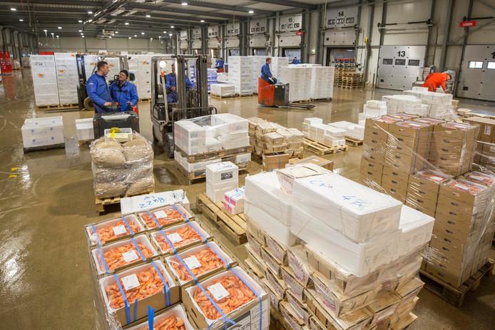 Vis en schaal- en schelpdieren arriveren bij Kotra Logistics in Yerseke in allerhande verpakkingen. Het bedrijf wil via het project Dare2Share de logistieke afhandeling van vis automatiseren.