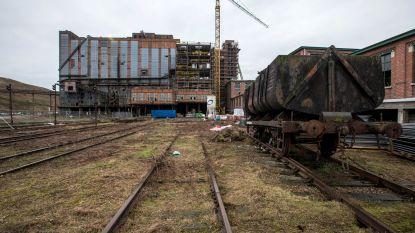 Vlaams Belang voor behoud van kolenwasserij