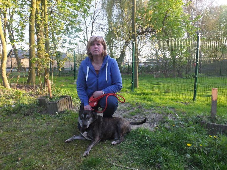Berlinda Heyerick met Rambo, een van de honden uit het opvangcentrum aan de nieuwe (groene) omheining, die de speelweide afsluit.
