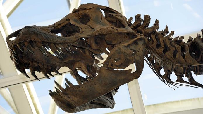 Een replica van een levensgrote Tyrannosaurus rex die in het station Leiden Centraal werd geplaatst ter promotie van de crowdfundactie Tientje voor T-rex.