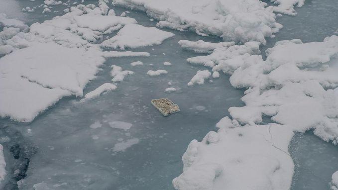 Plasticafval vervuilt nu ook Noordelijke IJszee