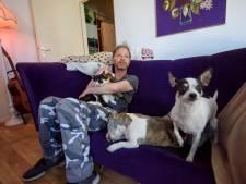 Stichting Straatkat schiet John Engels in Eindhoven te hulp
