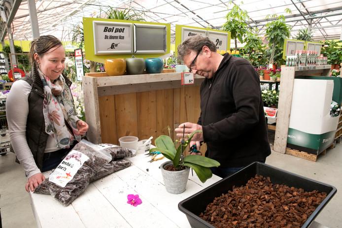 Orchideeëndokter bij tuincentrum de Biezen in Beek en Donk.