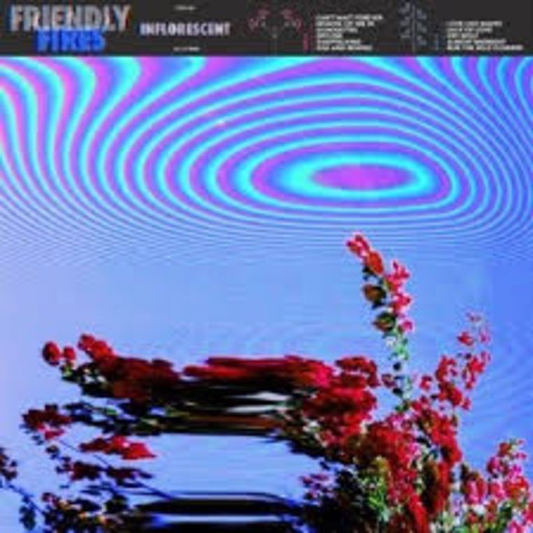 Albumhoes Friendly Fires: Inflorescent Beeld Polydor