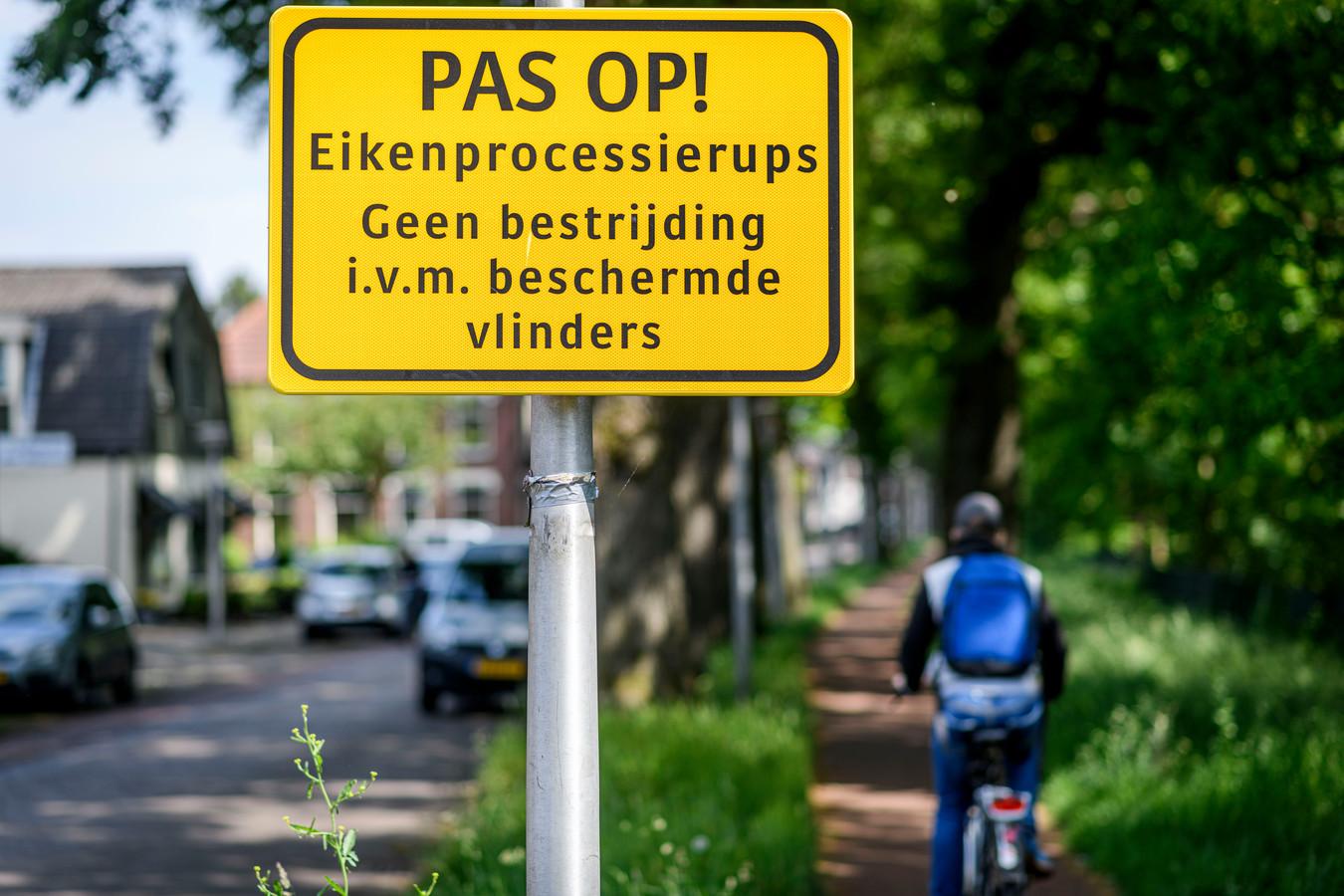 Aan de Oosterstraat zijn borden geplaatst door de gemeente dat er niet wordt opgetreden tegen de eikenprocessierups in verband met een beschermde vlinder