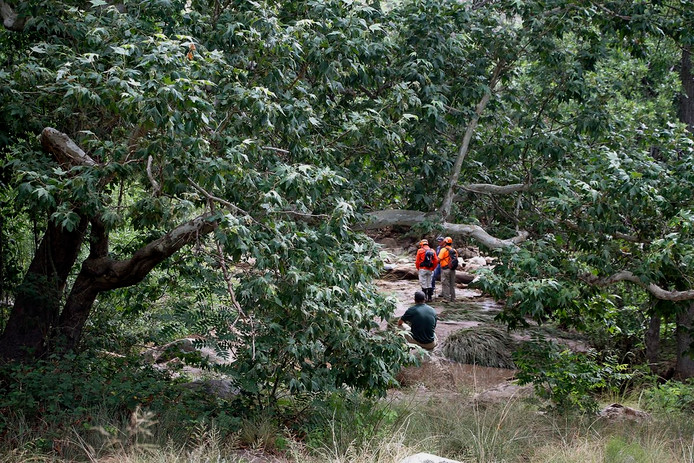 Reddingswerkers in Tonto National Park
