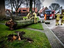 Keiharde wind teistert regio nog steeds: stormmeldingen stromen binnen