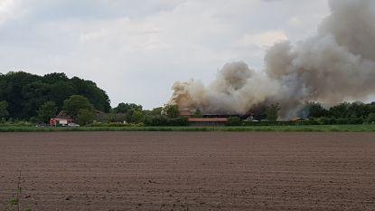 VIDEO. Zware uitslaande brand in woning en loods: parket stelt branddeskundige aan