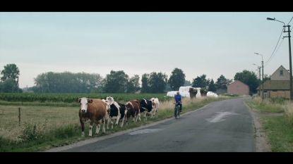 Documentaire toont harde stiel van boerenleven