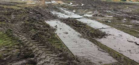 Circus Renz herstelt modderpoel in Haarlems park niet