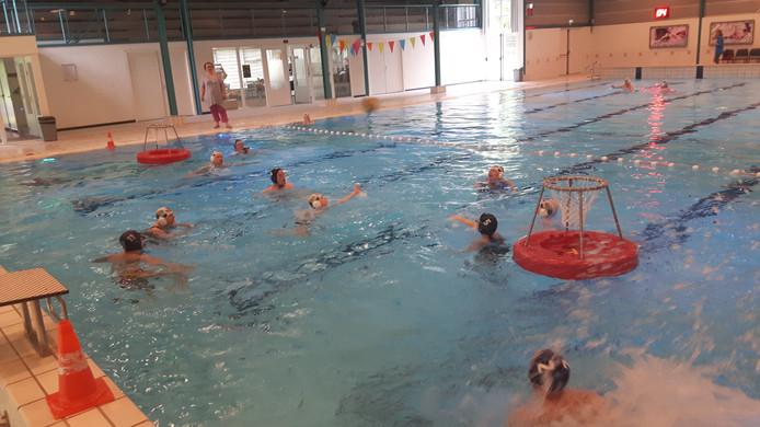 Waterbasketbal is één van de sporten tijdens de Paragames in Schijndel op 26 mei 2019.