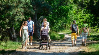 Wervikse Wandelsportvereniging biedt drie wandelingen aan