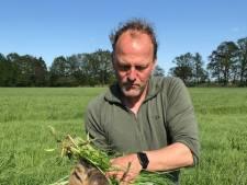 Assistent-trainer Heracles redt twee jonge reetjes: 'Mooiste dat er is'