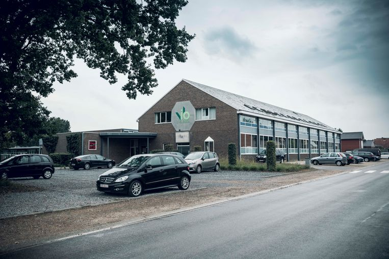 Vio St-Barbara school te Beringen