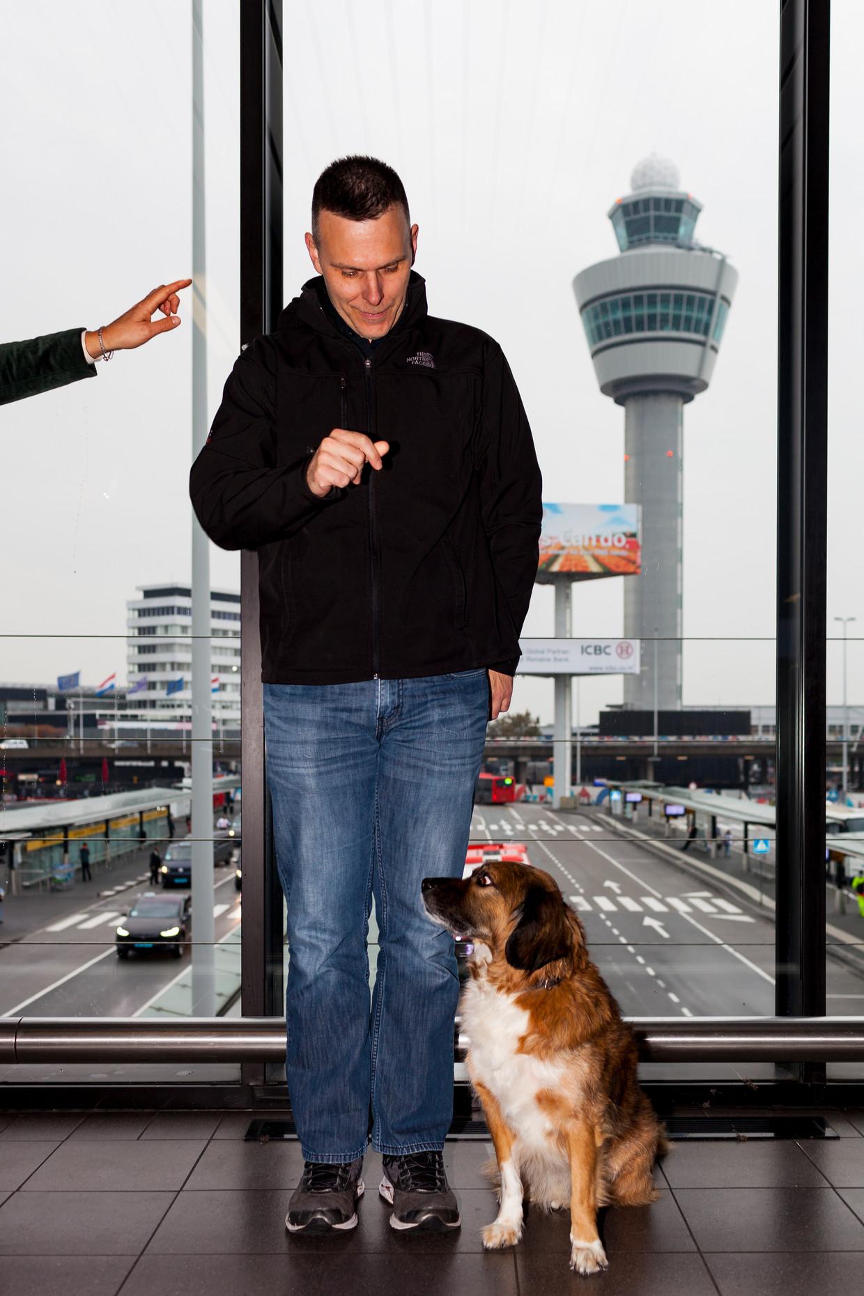 Matt Kaeberlein met hond Syl, een Friese Stabij, op Schiphol. Beeld Renate Beense