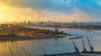 OESO tempert Belgische groeiverwachting voor volgend jaar