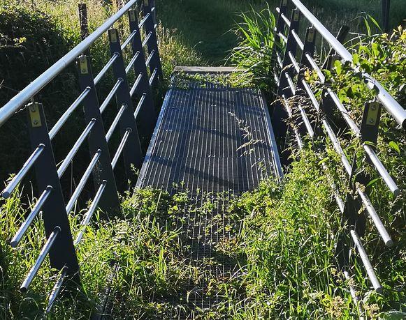 Honden bezeren hun pootjes aan dit brugje aan voetweg 50.