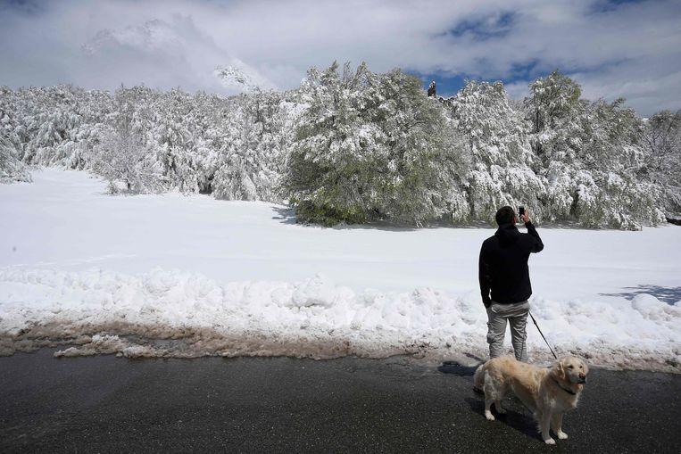 Onder meer de col de Vizzavona is bedekt met sneeuw.