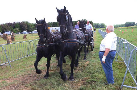 De marathon voor paarden is de jaarlijkse blikvanger van de Boerenkermis.