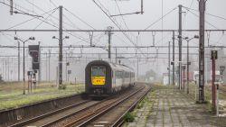 Professionele Oost-Europese bendes stelen massaal koperkabels langs Belgische spoorweg