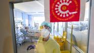 Deze chiroleiders, buschauffeur, verpleegster en student leggen uit waar en hoe ze recent besmet werden